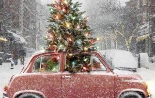 sfeerfoto_kerst_kerstboom_auto