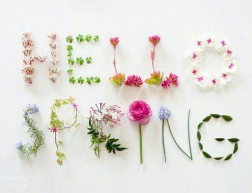 Inschrijven voorjaarsworkshop 2019