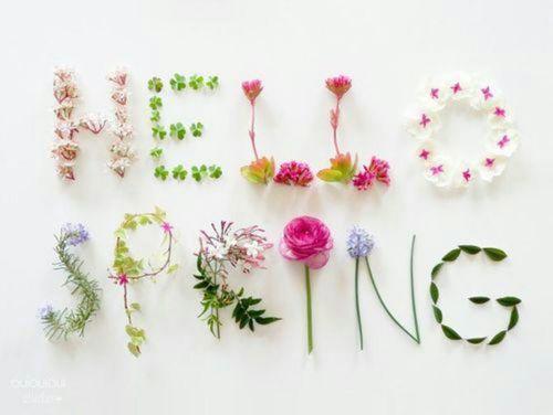 voorjaar_2019_hello_spring